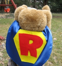 Teddy Super Hero Costume Capes